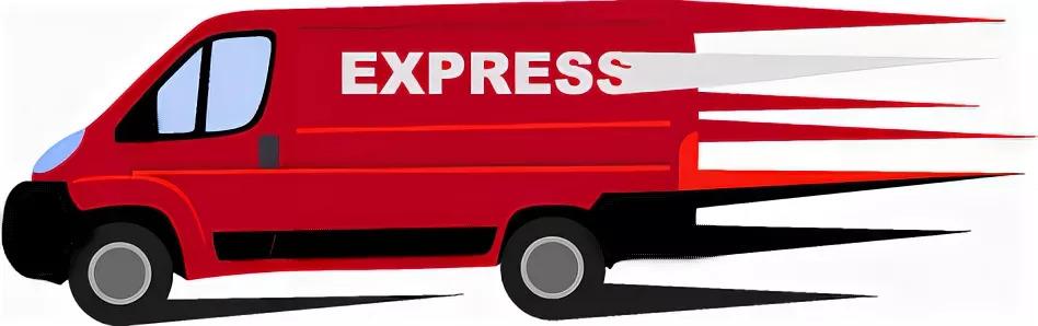 Услуги экспресс- доставки, express delivery